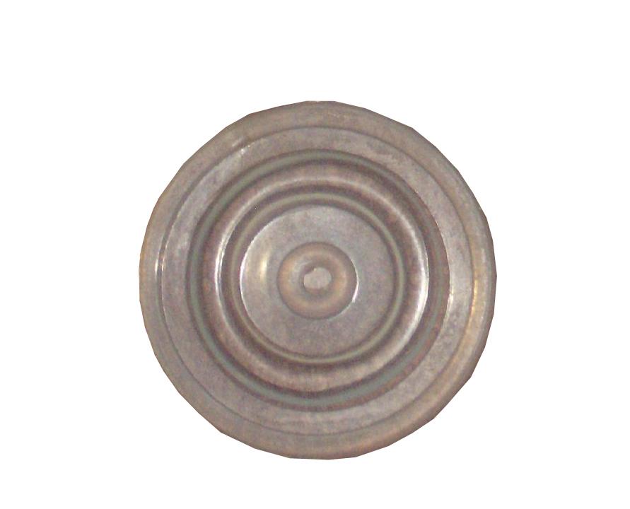 Membrana mare pulsator