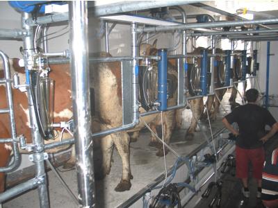 Sala de muls